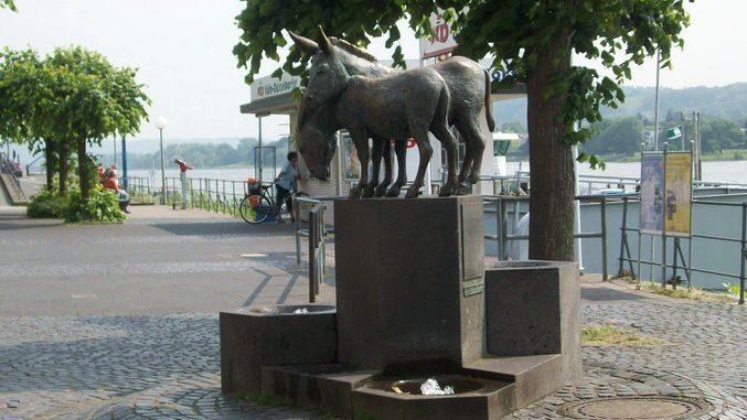 Fuente de burros, Königswinter