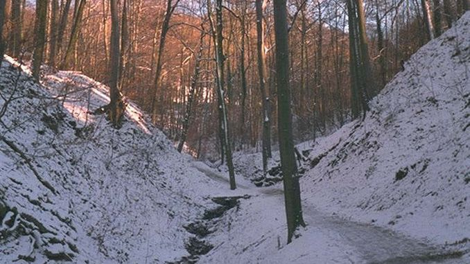678px_nachtigallental_siebengebirge_invierno