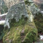 Siebengebirge naturaleza, piedras, trachita
