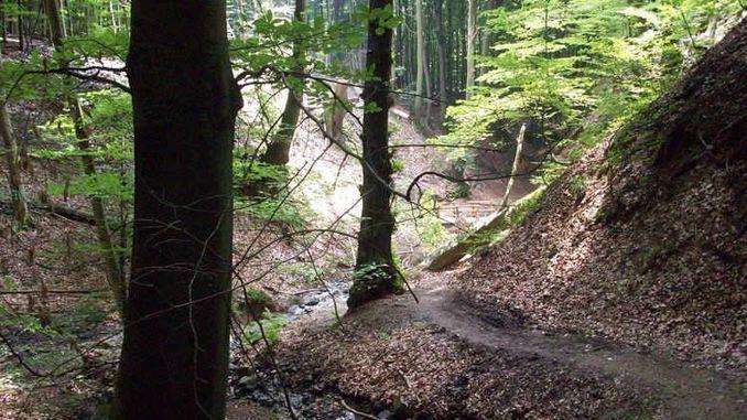 678px_tretschbachtal_siebengebirge2